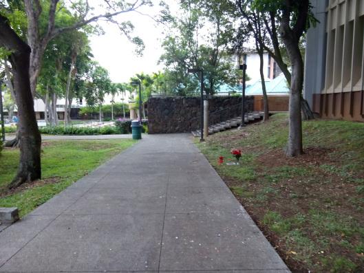 Phía sau Giảng đường Moore Hall (UH Manoa)